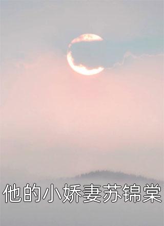 他的小娇妻苏锦棠小说