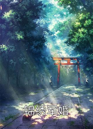 锦绣军婚小说