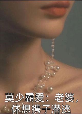 莫少霸爱:老婆,休想携子潜逃小说
