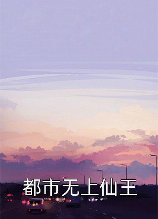 都市无上仙王小说