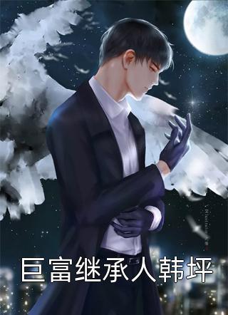 巨富继承人韩坪小说