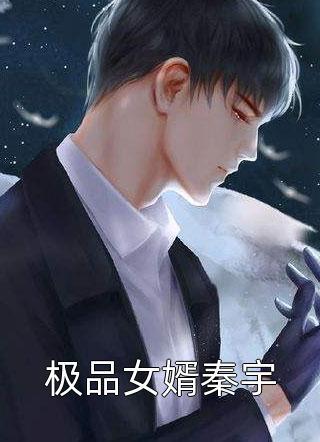 极品女婿秦宇小说