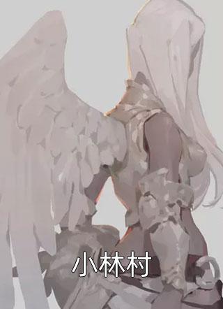 小林村小说