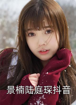 景楠陆庭琛抖音小说