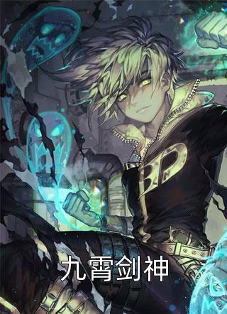 九霄剑神小说