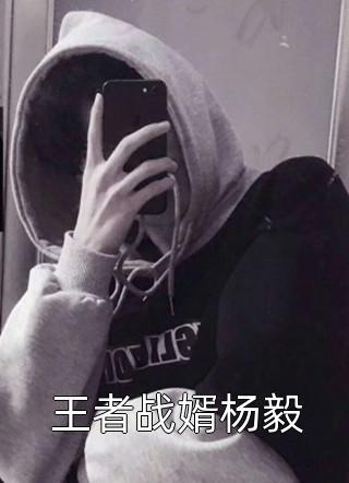 王者战婿杨毅小说