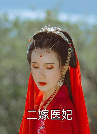 二嫁医妃小说